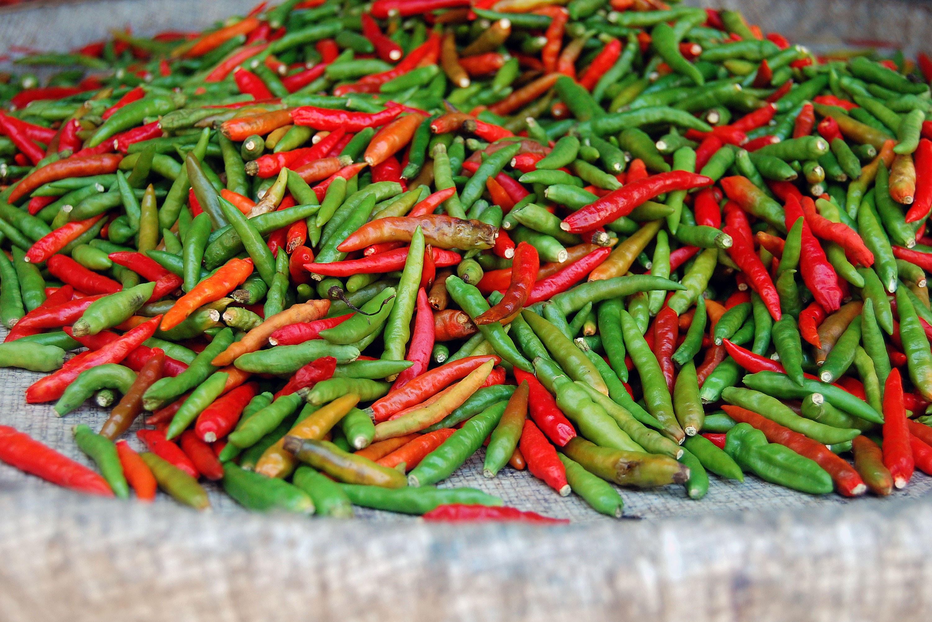 Fuck this hot ass pepper New Study Finds That Shoving A Hot Pepper In Ass Might Be Healthy